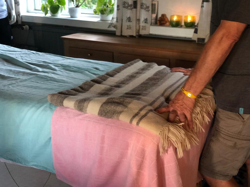 askbo zoneterapi briks